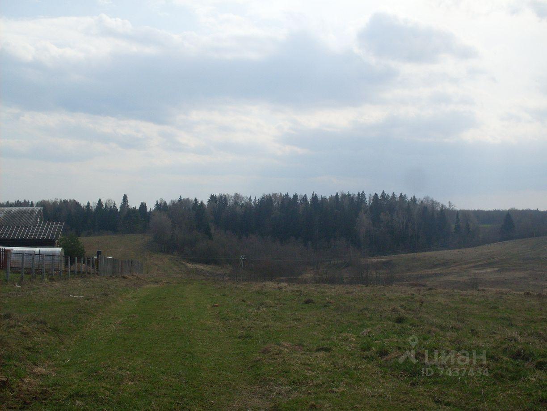 куплю участок Рузский район, деревня Михайловское