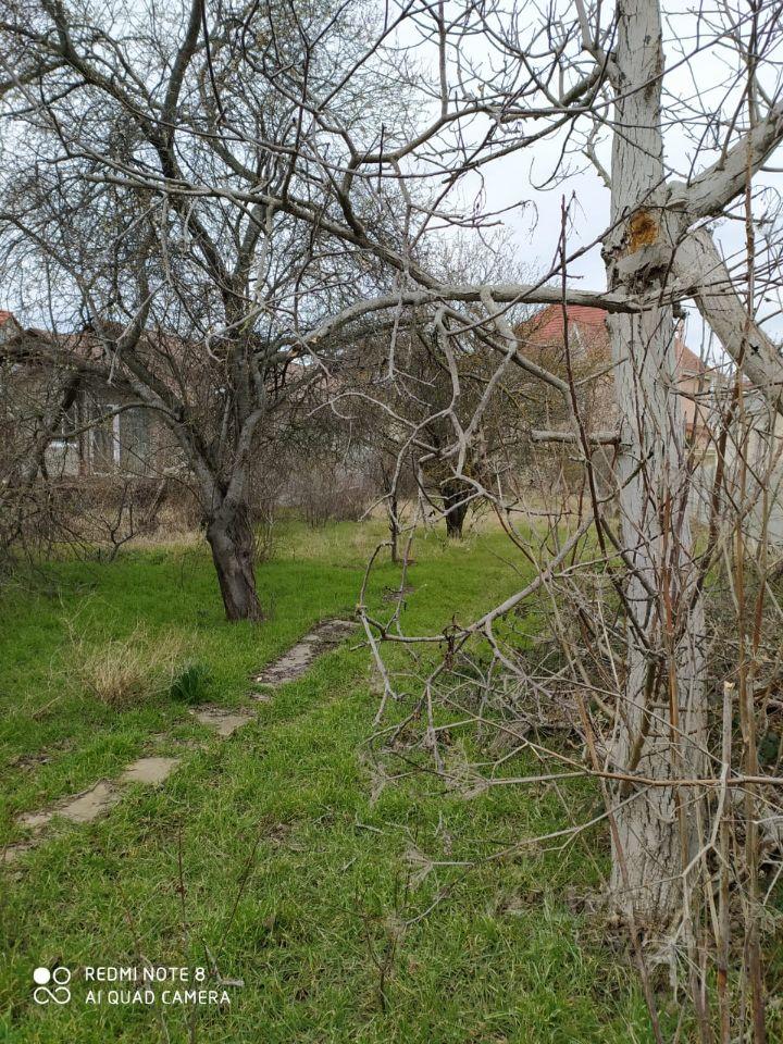 Продажа дома 25м² Севастополь, р-н Гагаринский - база ЦИАН, объявление 252687706