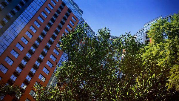 5-я Фотография ЖК «Life-Митинская Ecopark»