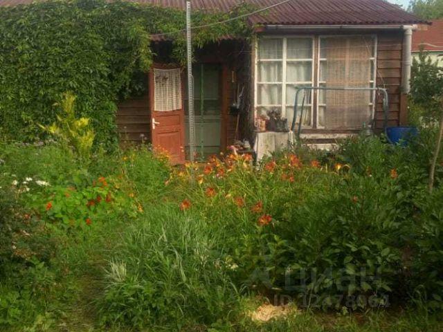 Рубеж тосненский район купить дом в дубае погода в январе