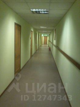 Аренда офисов в санкт-петербурге объявления поиск офисных помещений Каргопольская улица
