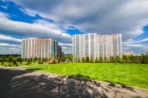 Аренда офиса 40 кв Муравская улица спрос в аренду коммерческой недвижимости в барнауле