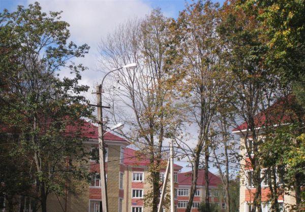 2-я Фотография ЖК «Первомайское»