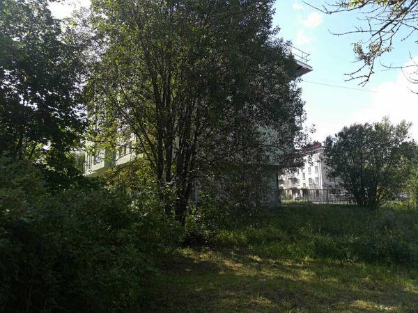 4-я Фотография ЖК «Петродворцовая резиденция»
