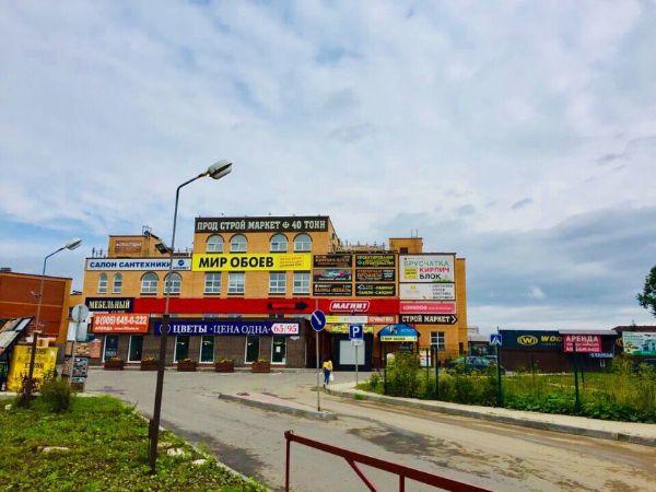 Специализированный торговый центр на ул. Борисоглебская, 100