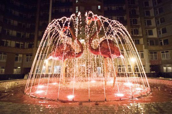 8-я Фотография ЖК «Фламинго»