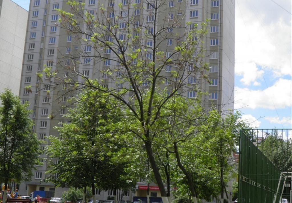 фото ЖК БЭСТ-квартиры в Северном Бутово