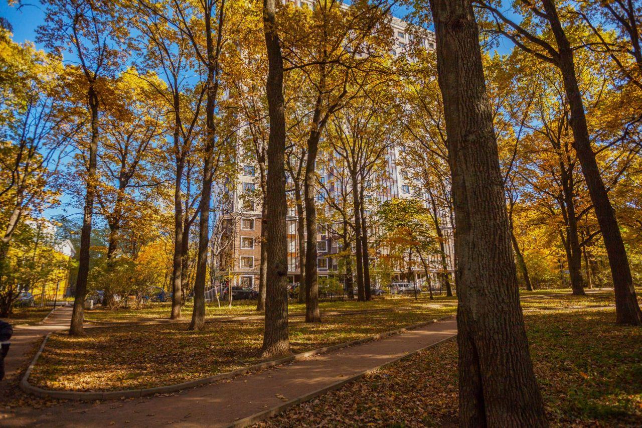 продажа квартир Тимирязев парк