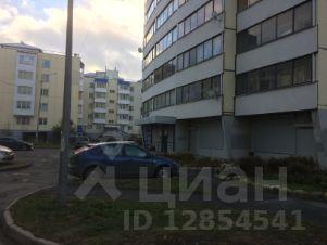 Снять помещение под офис Карельский бульвар коммерческая недвижимость ярославль продажа