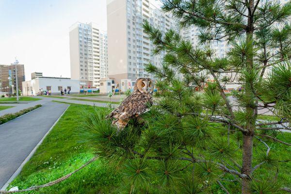 2-я Фотография ЖК «Микрорайон «Университетский»»