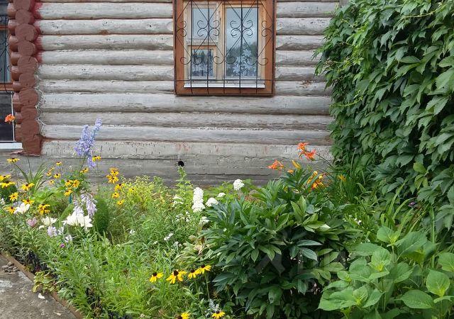 Купить цветы в подмосковье недорого с пмж без посредников, цветы дешево нижний новгород сормово