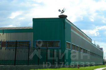 Аренда склада офиса екатеринбург аренда офиса рента