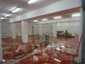 Аренда офиса москва полу-подвальном этаже аренда офиса 89033233675