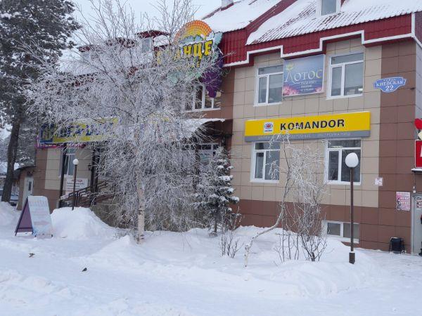 Торгово-офисный комплекс на ул. Киевская, 22