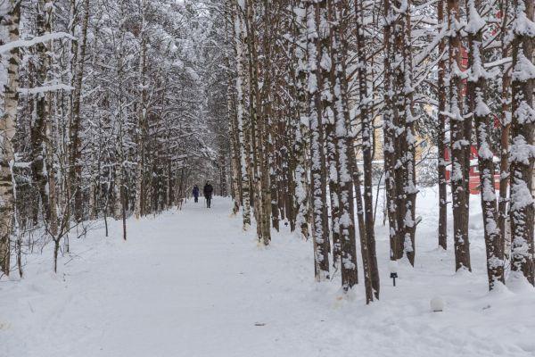 16-я Фотография ЖК «Южная поляна»