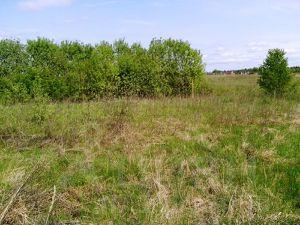 Продаю земельный участок под строительство жилого дома.