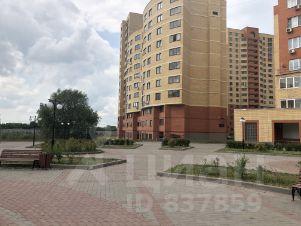 Портал поиска помещений для офиса Циолковского улица аренда офиса тополь