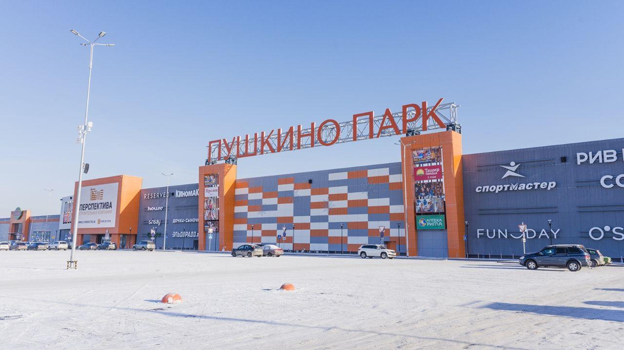 Торгово-развлекательном центре Пушкино Парк