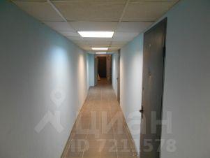 Аренда офиса 20 кв Серегина улица помещение для фирмы Жемчуговой аллея
