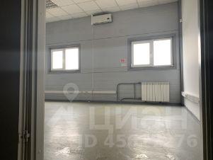 Красноярск сдам офис на час час волгограде стоимость в экскаватора в