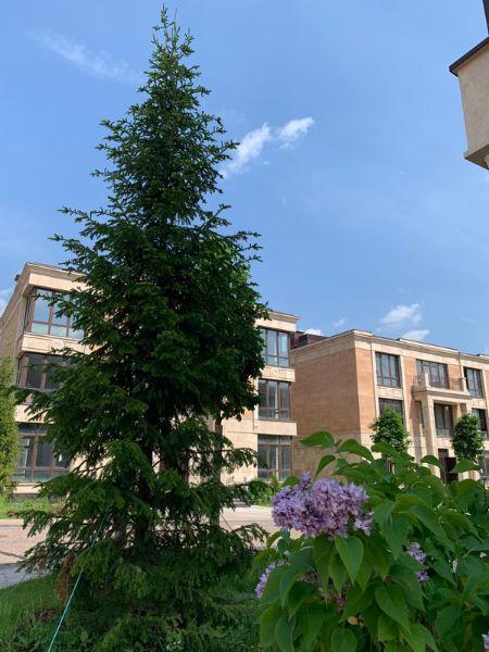 2-я Фотография ЖК «Берег столицы»