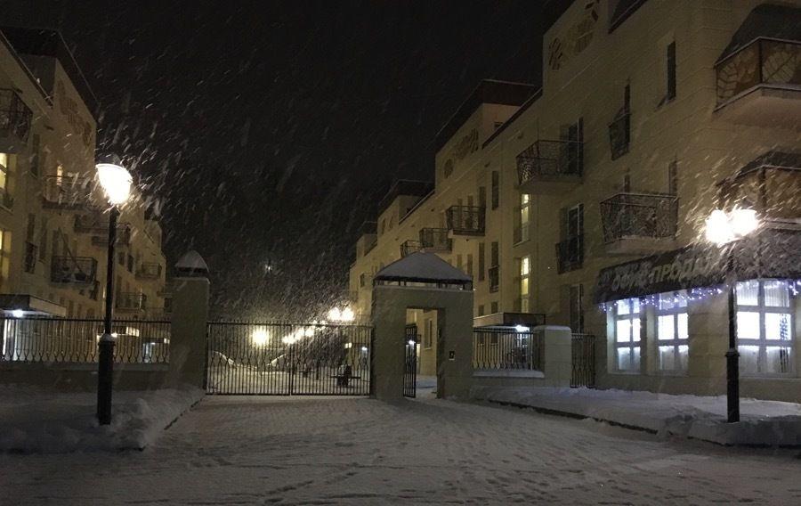 продажа квартир Берёзки