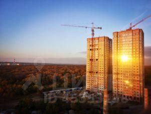 Днепровская роща