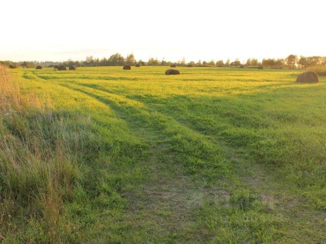 общий земельный участок