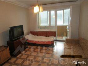 576456dcc88e4 11 объявлений - Снять 1-комнатную квартиру без посредников в ...